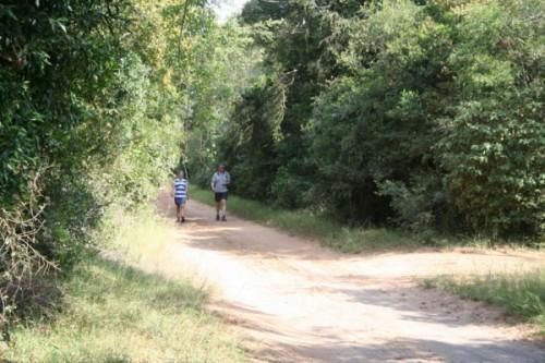 Waking-trails